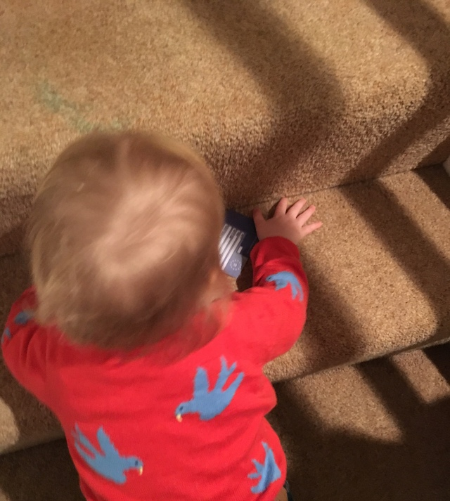 A toddler climbs stairs while she plays with a blue card